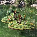 BIOHAVEN FLOATING ISLANDS®