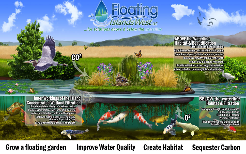 Floating Island for Ponds