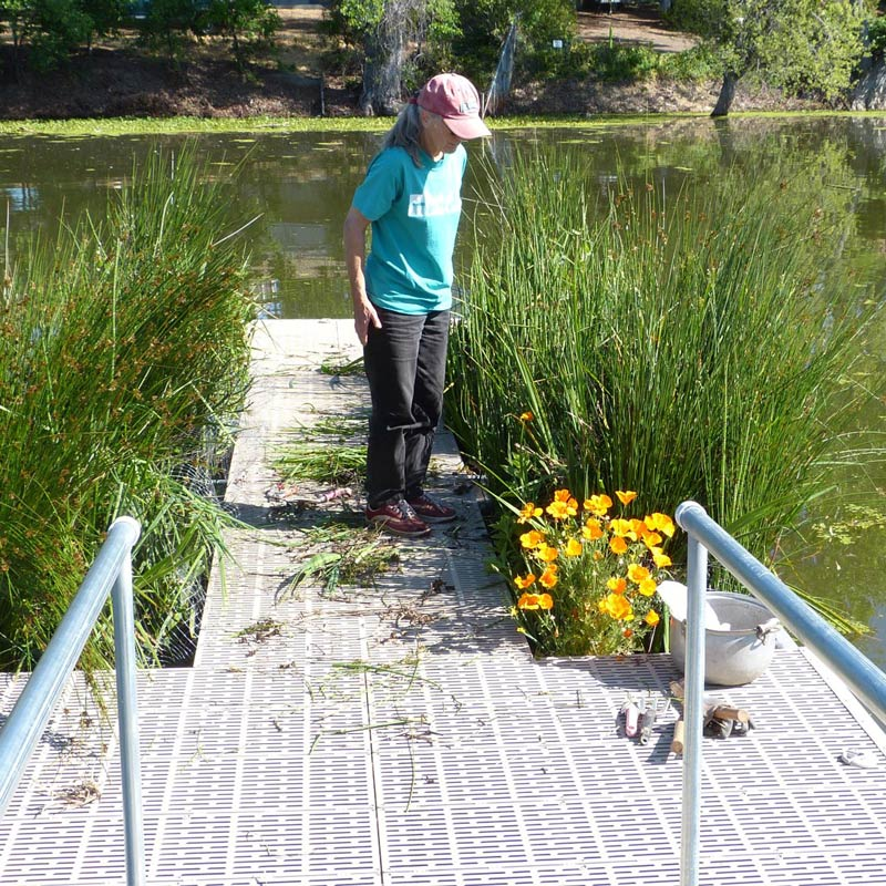 BioHaven® Living Walkway (floating dock)