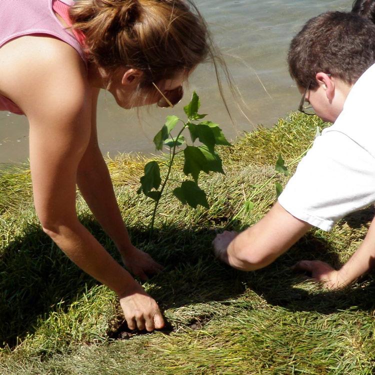 BioHaven® floating treatment wetland