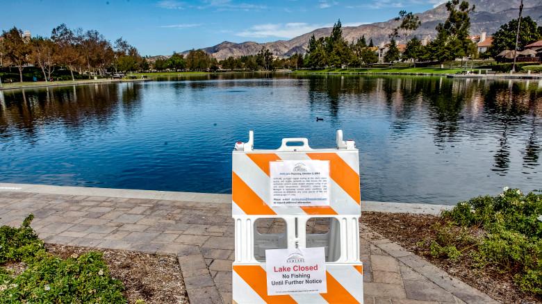 Algae Bloom closes lake